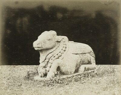 Nandi 1880 (Universiteit Leiden Digital Library)